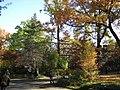 Zoo Berlin Herbst 1.jpg