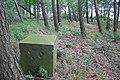 Łusč – pomnik na Wišničce 1.jpg