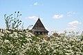 Башта на фоні квітів.jpg