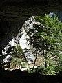 Вид на Гегский водопад из карстовой пещеры - panoramio.jpg
