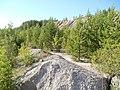 Гора искусственного происхождения - отвал - panoramio (1).jpg