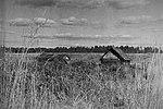 Деревня Чернушки Псковской области. Кадр 1.jpg