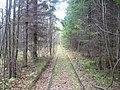 Дорога в тупик, начало сентября 2012 - panoramio (1).jpg