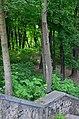 Западная часть парка Нивки. Фото 17.jpg