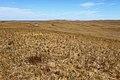 Карстовое поле Жанатаускен. Северное направление - panoramio.jpg