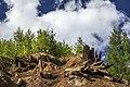 Медно-Рудянский карьер.Вскрывшиеся крепи старых шахт. - panoramio (1).jpg