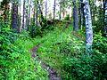 От Оли Исмаиловой - panoramio (2).jpg