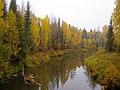 Река Ертым - panoramio.jpg