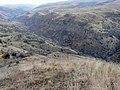 Река Угам выше лесхоза - panoramio.jpg