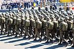 Урочистий марш з нагоди Дня Незалежності 513 (20843438206).jpg