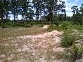 """ก่อนเป็น""""สวนสุนนท์กุล """"บ้านแก่งเค็ง - panoramio (3).jpg"""