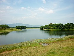 Bueng Nam Sai, a natural lake in Raman District, 26 km from Yala City, it was once the habitat of rare specie of fish Asian arowana