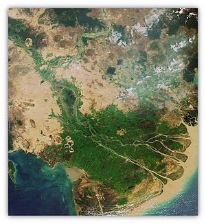 Operation Game Warden - Aerial view of the Mekong River Delta