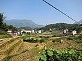 东溪村 - Dongxi Village - 2015.10 - panoramio.jpg