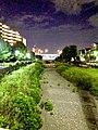空堀川・第2天王橋の夜景.jpg