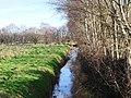 -2021-01-31 Field Drain near Ridlington, Norfolk.jpg
