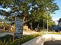 0001jfEast West Bajac-bajac Park Tapinac Olongapo City Zambalesfvf 11.JPG
