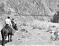 00060 Grand Canyon Historic- Mules and Black Bridge c.1932 (4762103728).jpg