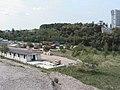 051 (l'area sopra i futuri tunnel di Cattinara) 26.jpg