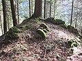06 Waldstein Castle.JPG