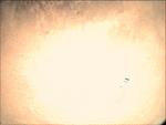 09-357.15.52 VMC Img No 13 (8269475874).png