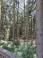 18.07.2015. Wildfreizeitpark Oberreith, 83567 Unterreit - panoramio (16).jpg