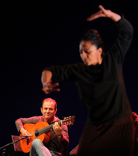 caedb Bienal flamenco
