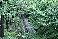 20080624上田城跡公園ケヤキ並木遊歩道.jpg
