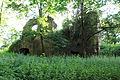 2012-06 Trzebina 18.jpg