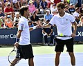 2013 US Open (Tennis) - Fabio Fognini and Albert Ramos (9669196250).jpg