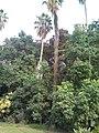 20150918 165841حديقة التجارب.jpg