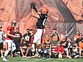 2015 Cleveland Browns Training Camp (20058304618).jpg