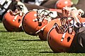 2016 Cleveland Browns Training Camp (28075933693).jpg