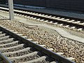 2017-09-28 (640) Bahnhof Tullnerfeld.jpg