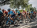 2019 - Tour de France - Enghien (48213925756) (cropped1).jpg