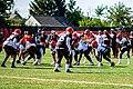 2019 Cleveland Browns Training Camp (48532086016).jpg