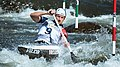 2019 ICF Canoe slalom World Championships 134 - Denis Gargaud Chanut.jpg