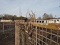 20200229 145527 Rheinpfalzallee 83.jpg