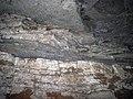 24 middle Beaver Bend shale, VoD walls 1 (8324970541).jpg