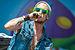 257ers-Rock im Park 2014 by 2eight 3SC8587.jpg