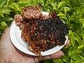 2607Cuisine food in Baliuag Bulacan Province 30.jpg
