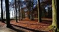 3956 Leersum, Netherlands - panoramio (10).jpg