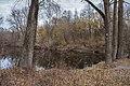 68-236-5008 озеро у Білецькому парку.jpg