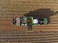 AVR Puma 4.0 self-propelled potato harvester.jpg