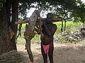 A Farmer in Tamil Nadu.JPG