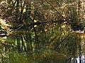 A Natural Frame - panoramio.jpg