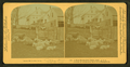 A New Hampshire farm yard, U.S.A, from Robert N. Dennis collection of stereoscopic views.png