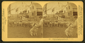 A New Hampshire farm yard, from Robert N. Dennis collection of stereoscopic views 5.png