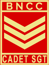 A SGT.png