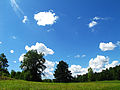 A Typical Sky.jpg